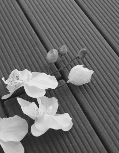 IMG_5685 czarno biały